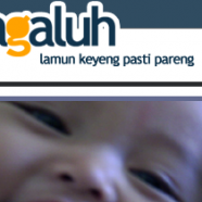 Project: Putra Galuh Blogs